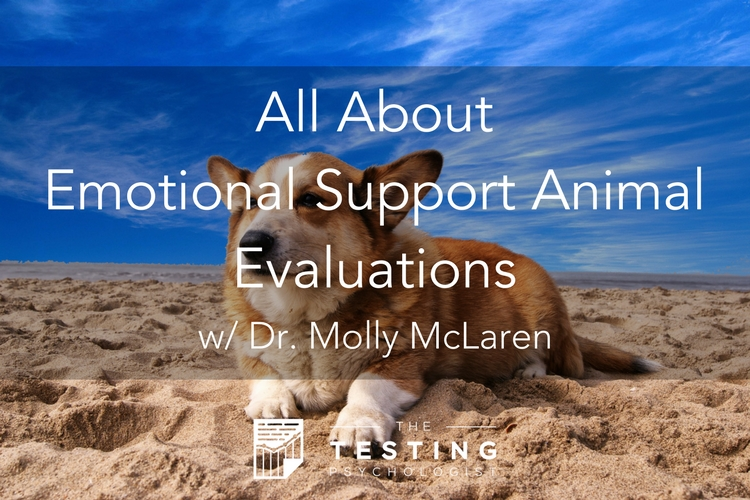 Emotional Support Animal Evaluations
